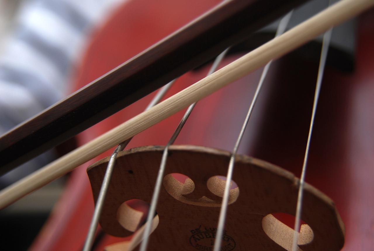 cello-663563_1280