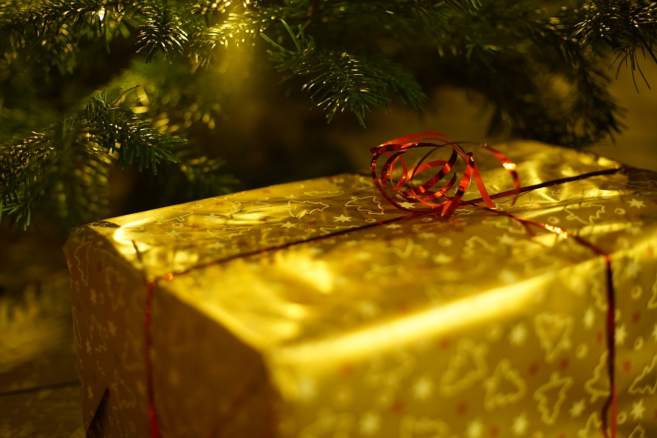 christmas-1786558_1280