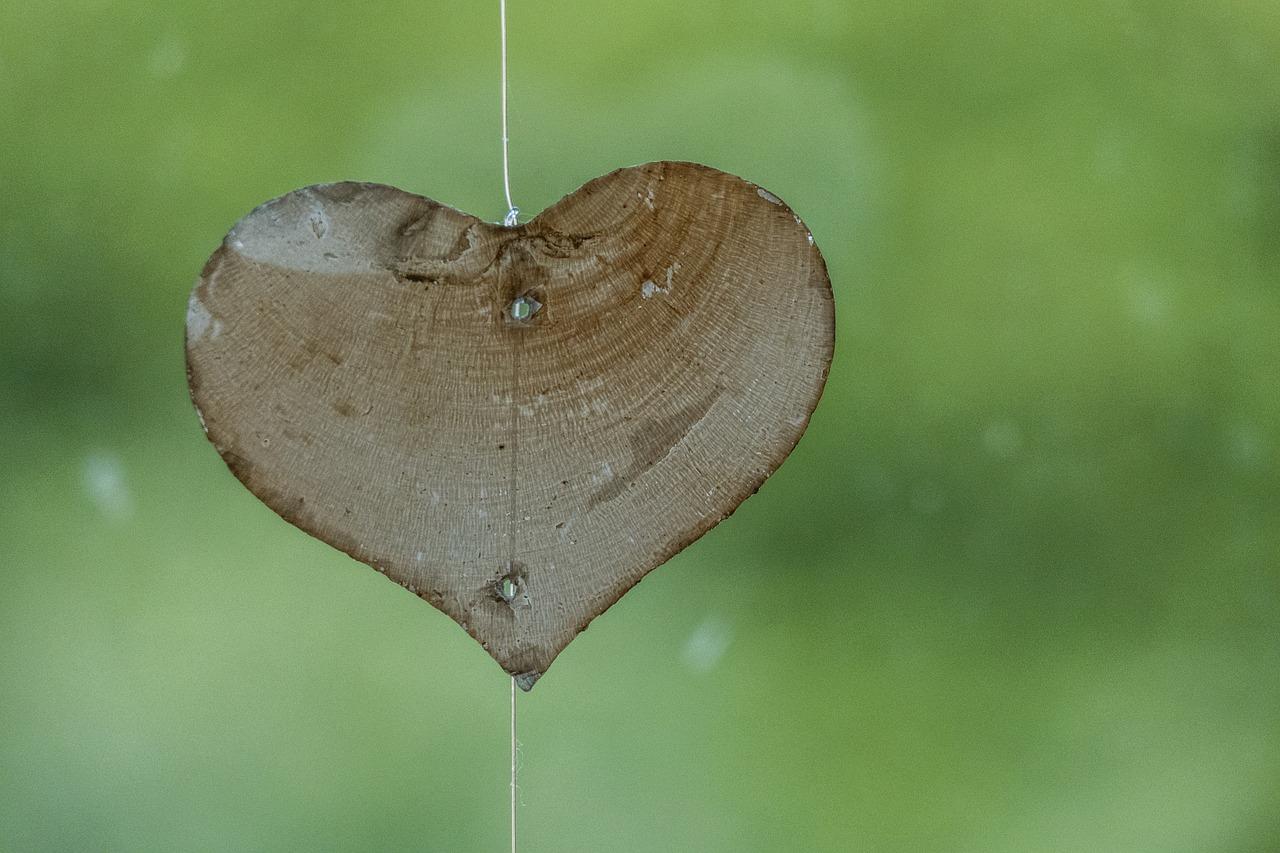heart-1665157_1280